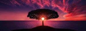 Idéation : par la lumière du coeur, entre ciel et racines